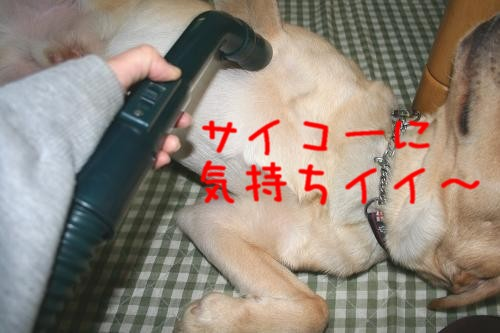 2007.01.17.05.jpg
