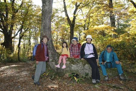 0701025白山ブナ原生林モデル