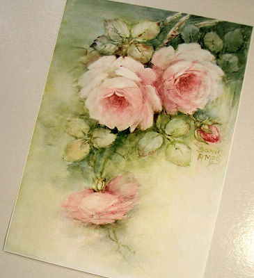 憧れの薔薇