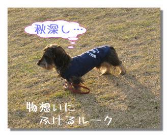 akiyugure8.jpg