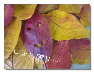 sticker5.jpg