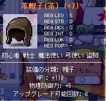 20070528211941.jpg