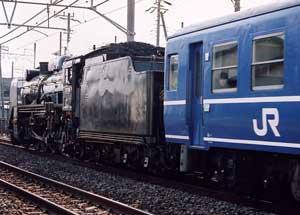 d5103.jpg