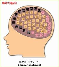 菊本の脳内
