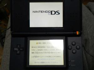 P1010538.jpg
