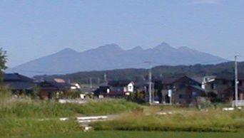 6月の八ヶ岳
