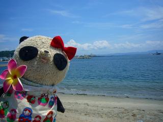 ばぶちゃん近所の海でパチリ