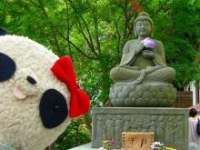 仏像の手にはアジサイ