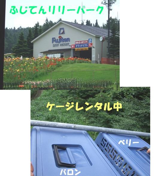 20070804212254.jpg