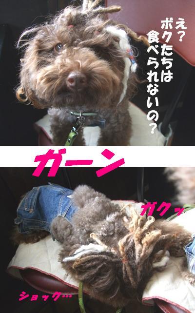 うしすけ6