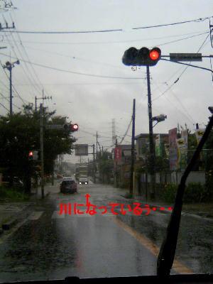 20070730b.jpg