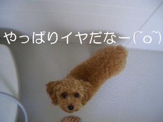 20070825144141.jpg
