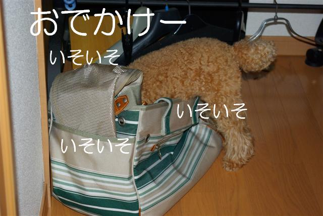 20070924130804.jpg