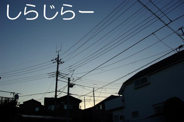 20071013220146.jpg