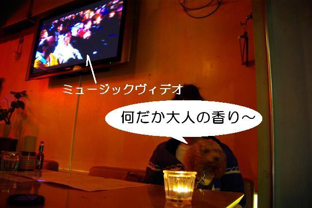 2007.11.24中目黒 008 (Small)