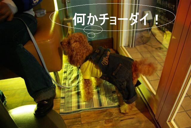 2007.11.24中目黒 021 (Small)