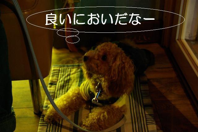 2007.11.24中目黒 026 (Small)