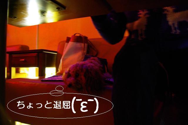 2007.11.24中目黒 018 (Small)