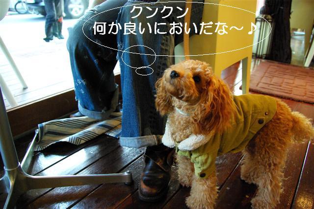 2007.11.24中目黒 045 (Small)