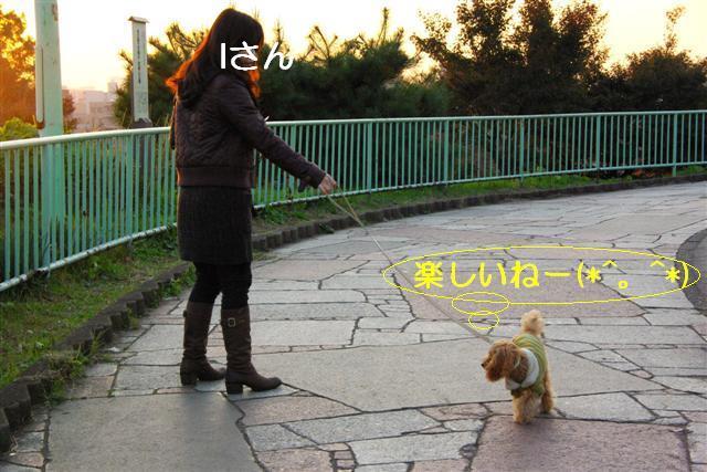 2007.11.24中目黒 053 (Small)
