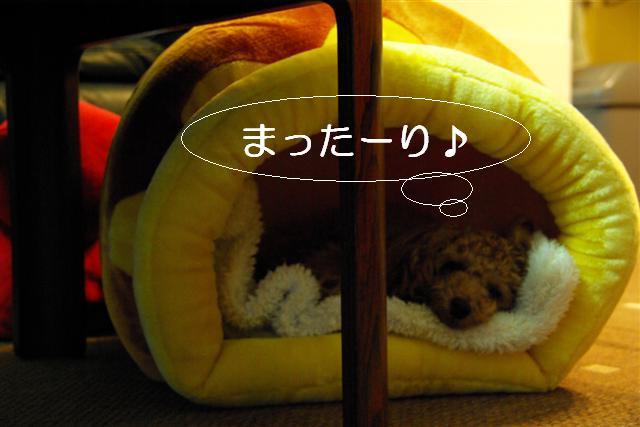 2007.11.24中目黒 005 (Small)