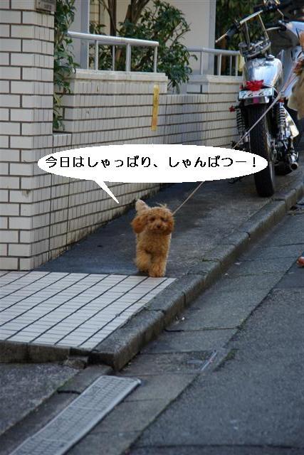 ティティチャン初デート 001 (Small)