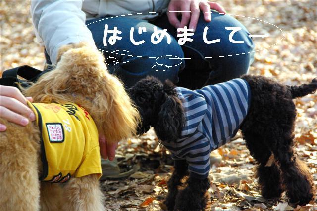 ティティチャン初デート 050 (Small)