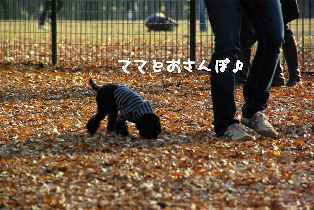 ティティチャン初デート 108 (Small)