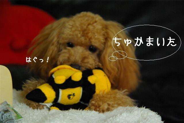 ティティチャン初デート 081 (Small) (2)