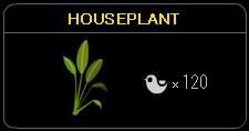 このハウスプラント、1本しか出ないし・・・