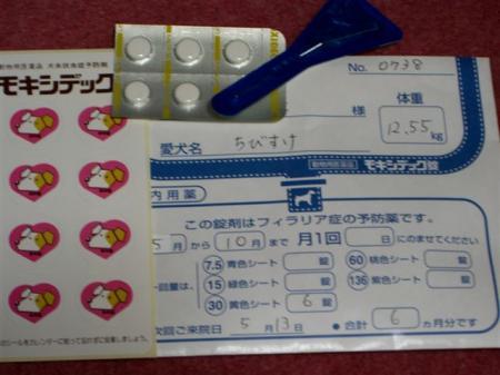 20060513213359.jpg