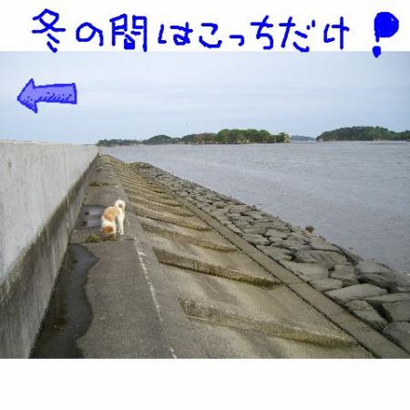20060530232250.jpg