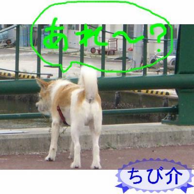 20060910183806.jpg