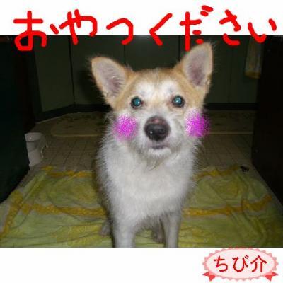 20060919214621.jpg