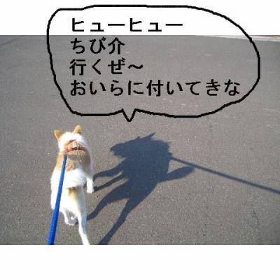 20061105184048.jpg
