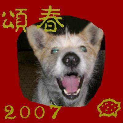 20061230213139.jpg