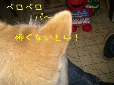 Kxq2vybA.jpg