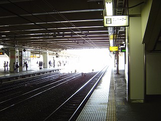 DSC00702.jpg
