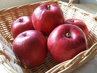 070322リンゴちゃん