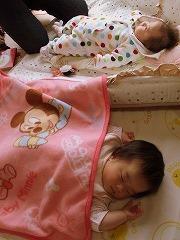 070331赤ちゃんず
