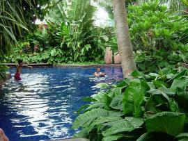 シェラトン グランデ スクンビット ホテル バンコク プール