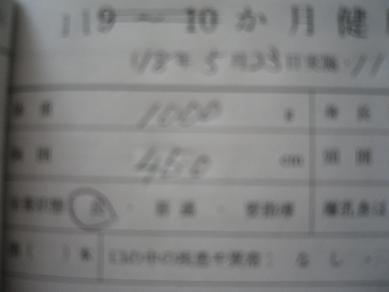 20060524124949.jpg