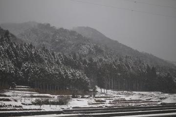 北海道旅行記2011(98)