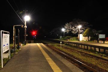 桜紀行2011(50)