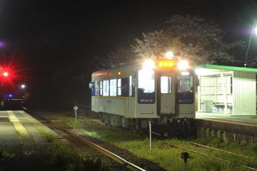 桜紀行2011(52)