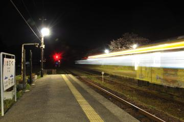 桜紀行2011(56)