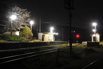 桜紀行2011(57)