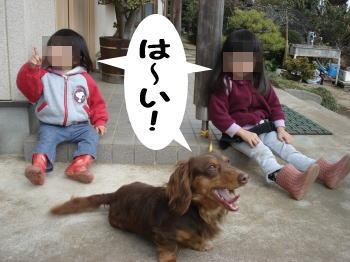 kai-chibi.jpg