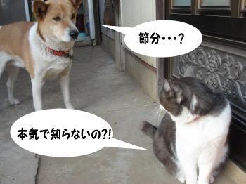 katsu-mozuku3.jpg