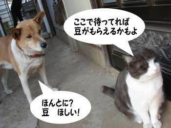 katsu-mozuku4.jpg